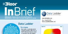 DATA LADDER InBrief (thumbnail)