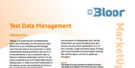 00002647 - TEST DATA MANAGEMENT Market Update (cover thumbnail)