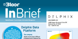 00002661 - DELPHIX InBrief (cover thumbnail)